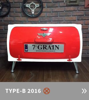 TYPE-B2016