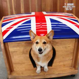 "Dog House ""Union Jack"""
